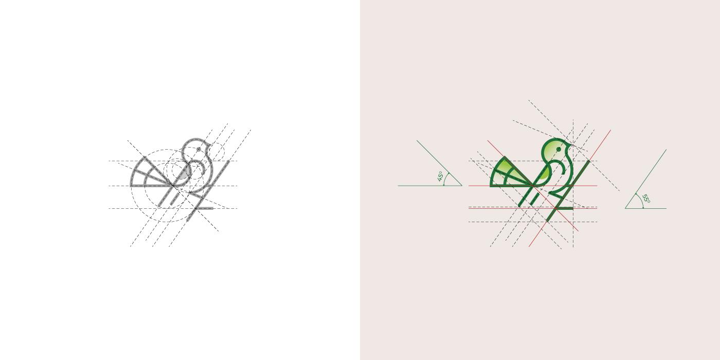 Bird logo and golden ratio grids