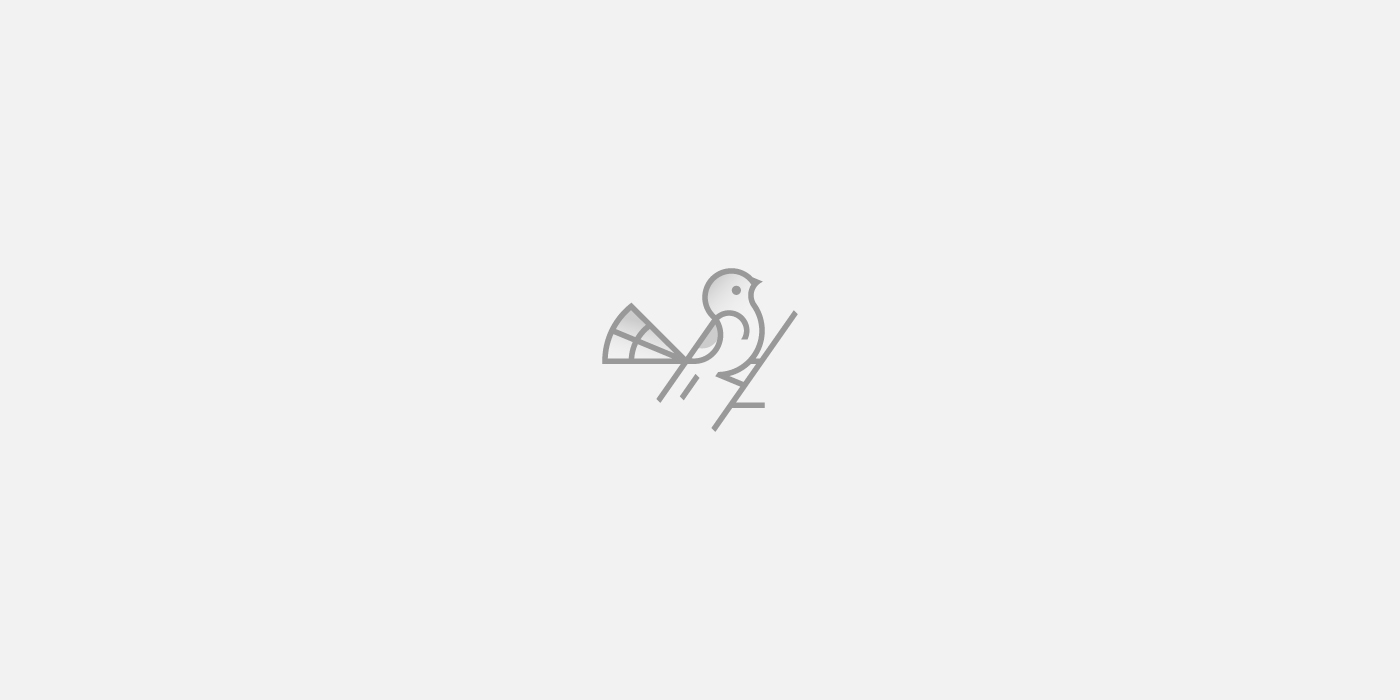 Bird logo design - Dainogo
