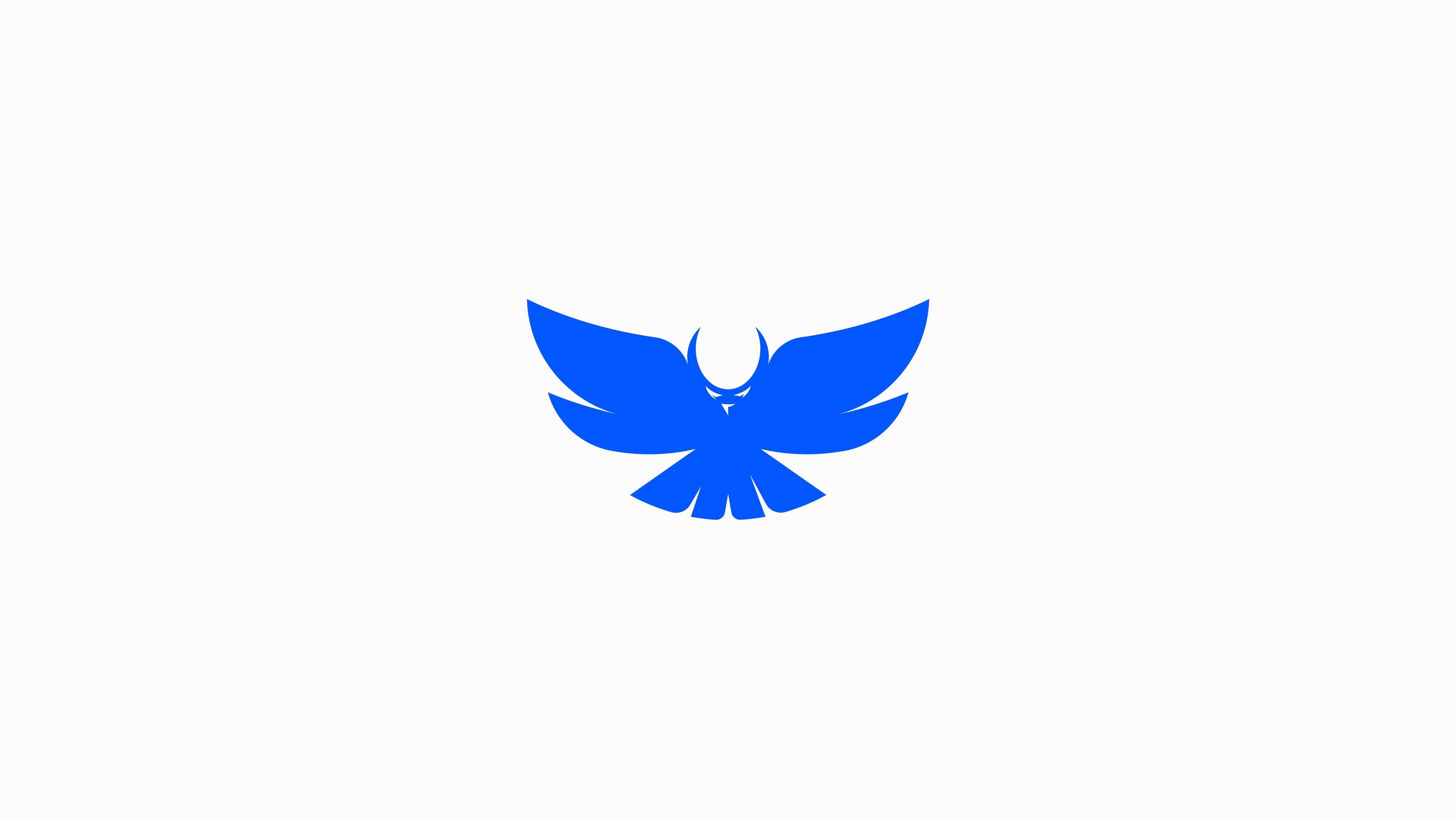 Bird-logo-Owl-logo-design-with-golden-ratio