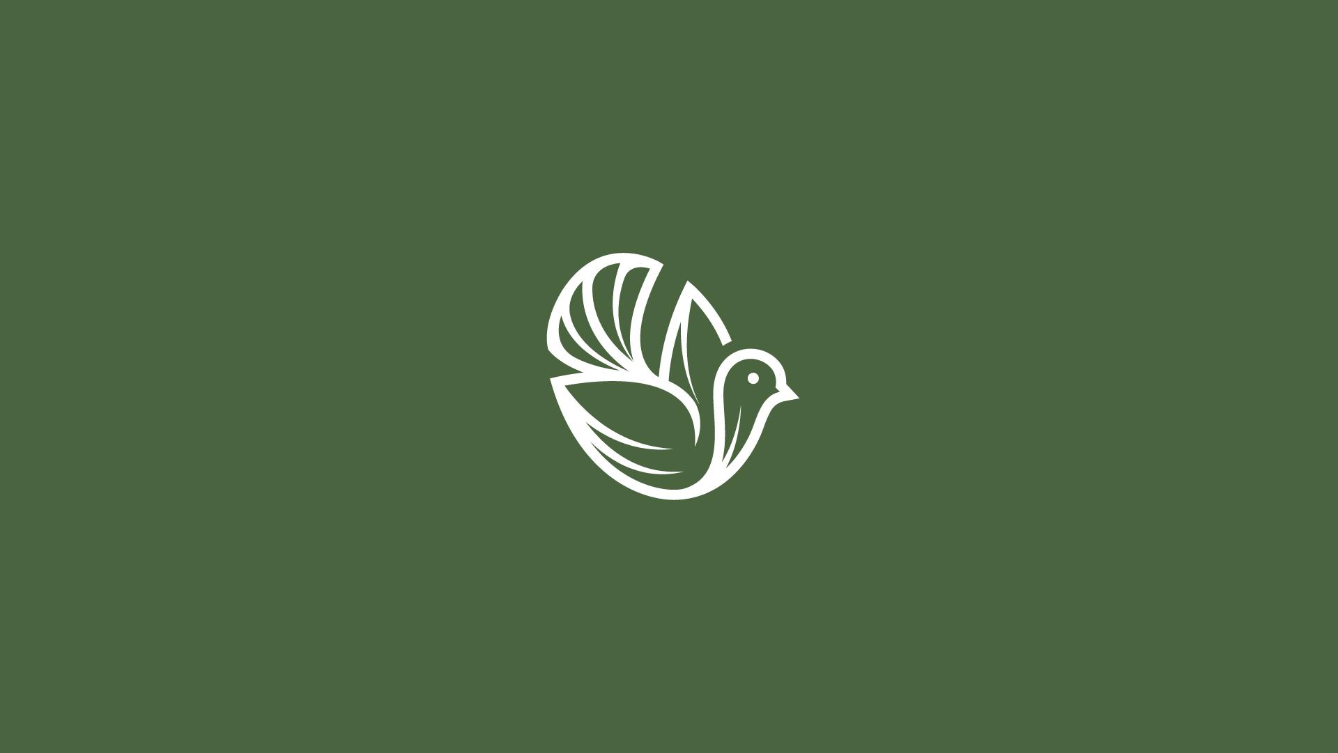 Bird-logo-for-sale